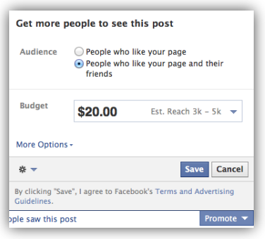 facebook promoted posts how to promote facebook posts
